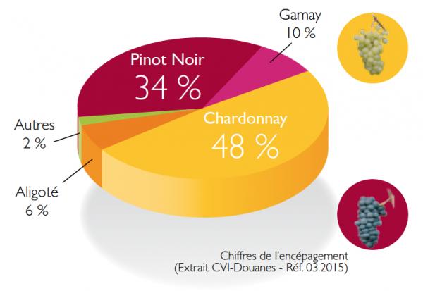 Crédit : Bureau Interprofessionel des Vins de Bourgogne