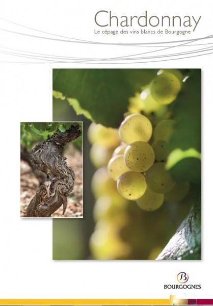 Crédit : Bureau interprofessionnel des vins de Bourgogne